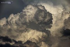 061818 - Billowing Beautiful Nebraska 002 (NebraskaSC Photography) Tags: nebraskasc dalekaminski nebraskascpixelscom wwwfacebookcomnebraskasc stormscape cloudscape severeweather severewx nebraska nebraskathunderstorms nebraskastormchase weather nature awesomenature storm thunderstorm clouds cloudsday cloudsofstorms cloudwatching stormcloud daysky badweather weatherphotography photography photographic warning watch weatherspotter chase chasers newx wx weatherphotos weatherphoto sky magicsky extreme darksky darkskies darkclouds stormyday stormchasing stormchasers stormchase skywarn skytheme skychasers stormpics day orage tormenta light vivid watching dramatic outdoor cloud colour amazing beautiful stormviewlive svl svlwx svlmedia svlmediawx