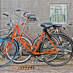 Bicycle Mess thumbnail