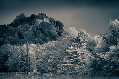 Kildean Loop - 03 Oct 2018 - 36.jpg (ibriphotos) Tags: kildeanloop autumn duotone wallacemonument forthvalleycollege stirling trees weather leaves stirlingcastle