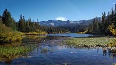 Twin Lakes in Autumn (Ms. Jen) Tags: twinlakes mammothlakes eastersierra sierranevadamountains autumnleaves goldenaspens aspentrees lake ducks autumn california msjencom photobyjeniferhanen crystalcrag