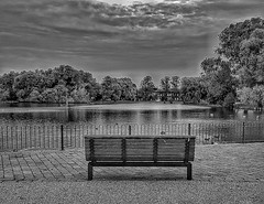 Freedom is Fantastic!😀 (LeanneHall3 :-)) Tags: blackandwhite mono bench lake geese maletlamberthighschool trees leaves sky skyscape clouds cloudsstormssunsetssunrises talkativeclouds eastpark hull kingstonuponhull landscape canon 1300d groupenuagesetciel sunrise sun