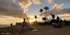 Hawaiin sunset (Stan S. Gallery) Tags: beach sunset sunlight sand ocean sun clouds palmtrees landscape hawaii cloudscape beachgoers sillouettes swimmers