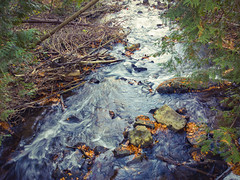 Limehouse (Blia100) Tags: water river digital nokia lumia green autumn sun blue brown white colour color