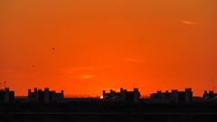 Orange glow (Greenstone Girl) Tags: olhão sunset algarve seaside portugal orange