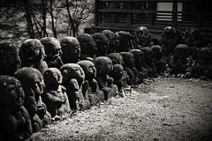 愛宕念仏寺 (小川 Ogawasan) Tags: japan japon kyoto nenbutsuji otagi rakan saga temple moss