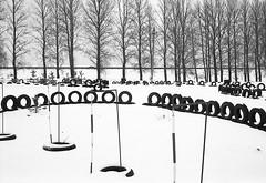 ***** (Lana Kim) Tags: landscape blackandwhite bw filmscan filmphoto filmcamera analog monochrome winter