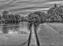 Follow the line!😊 (LeanneHall3 :-)) Tags: blackandwhite mono bridge railings grass trees leaves branches sky skyscape clouds cloudsstormssunsetssunrises landscape eastpark hull kingstonuponhull canon 1300d groupenuagesetciel