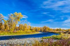 Autumn & The Bow (stevenbulman44) Tags: autumn fall canon 2470f28l filater polarizer blue sky color landscape bowriver banks cloud calgary alberta