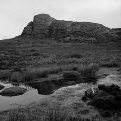 Hay Tor (ronet) Tags: hasselblad500cm haytor bw blackandwhite dartmoor diydeveloped film granite hasseblad homedeveloped ilforddelta100 ilfotecddx mediumformat moorland pool