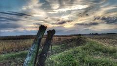 the big finish.....(HFF) (BillsExplorations) Tags: fence fencefriday sunset clouds dusk farm field harvest illinois oldfence post border broken dilapidated finish cornfield fall autumn
