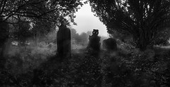 Spooky graveyard panorama (Greg_Davies) Tags: grave graves silhouette history wales united kingdom black white mono monochrome panorama panoramic fog spooky horror halloween autumn fall season seasons backlighting