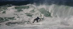 IMG_1389 (leonmoreyclub) Tags: aquitaine atlantique barel bydtn beachbreak capreton compétition femme france hossegor landes nature océan plage photo pro profrance quiksilver roxy sea seignosse soleil surf tube wave vagues