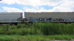 IMG_6802 (jumpsoner) Tags: benching benchingsteel benchingtrains bencher boxcars freights freightculture freightgraffiti foamer foamers freghtculture traingraffiti trains trainspotting traingraff tracksides graffiti graffculture graff g