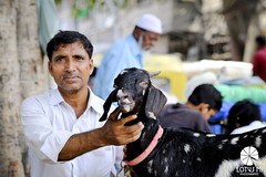 Goat and Man in Delhi (Lotus Mi) Tags: goat trip journey fuji fujifilm xpro2 xf56mmf12r india delhi travel animal portrait