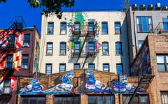 Allen Street Pigeons (Eridony (Instagram: eridony_prime)) Tags: newyorkcity newyorkcounty newyork nyc manhattan lowereastside art graffiti streetart lowermanhattan