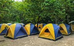 симиланские-острова-similan-islands-таиланд-7825 (travelordiephoto) Tags: similanislands thailand phuket пхукет симиланскиеострова симиланы таиланд lamkaen phangnga th