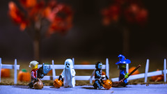 Next house, let's go! (3rd-Rate Photography) Tags: lego werewolf witch skeleton ghost minifig minifigure halloween trickortreat pumpkin pumpkinpatch street fun fall october canon 50mm 5dmarkiii jacksonville florida earlware 365 3rdratephotography