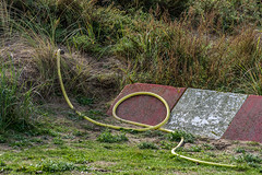 Horse pipe (Giara,) Tags: netherlands nederland noordwijk duinen dunes horsepipe trafficsign nature landscape landschap grass colours