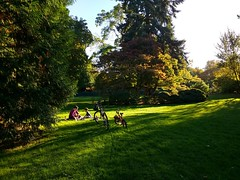 Volunteer Park (Seattle Parks & Recreation) Tags: afternoon seasons fall shadows people bicycle relaxing children parent outdoors green lawn