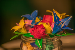 Paper flowers (setsuo.leandro) Tags: nikon d3400 origami stars flowers love handcraft