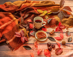 Autumn composition.Fall leaves, cup of tea and a warm scarf on wooden background (zaklina.miljkovic) Tags: autumn autumnmood background biscuit bright chestnut cinnamon colorful composition cup dark decoration fall foliage golden happy leaf leaves natural orange pattern red rough rustic scarf season tea texture tranquil variety wooden yellow