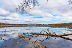 Autumn nature (gubanov77) Tags: autumn nature landscape lake water sky skyline october wood russia vvedensky vvedenskoelake pokrov petushinskiyraion vladimiroblast