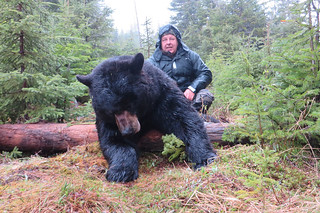 Newfoundland Caribou Hunt, Moose, Bear Hunting 20