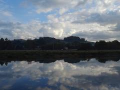 Reflected autumn clouds (Phil Gayton) Tags: water field tree sky cloud scenery landscape snipe island river dart totnes devon uk reflection