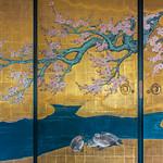 Shoji Sakura thumbnail