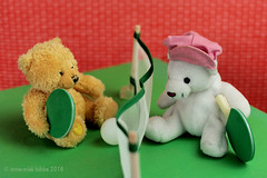 PING PONG (Anne-Miek Bibbe) Tags: speelgoed toy spielzeug giocattoli juguetes bringuedos jouets bear teddybear beertje teddybeer beer speelgoedbeer nounours minibeer minibear pingpong tafeltennis tabletennis canoneos700d canoneosrebelt5idslr annemiekbibbe bibbe nederland 2018 happyteddybeartuesday teddybeartuesday