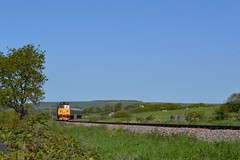 50049 Defiance (Will Swain) Tags: swanage railway diesel gala 13th may 2018 train trains rail railways transport travel uk britain vehicle vehicles england english 50049 defiance class 50 049 woodyhyde campsite during harmons cross williamsdigitalcamerapics101