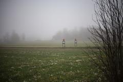 _X2G9763[1] (estridelisabeth) Tags: hogstad molnigt dis landsväg höst