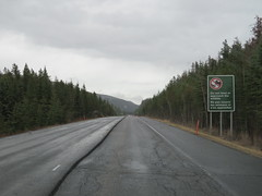Leave the wildlife alone in Jasper National Park (says sign on right) (jimbob_malone) Tags: 2018 highway16 alberta