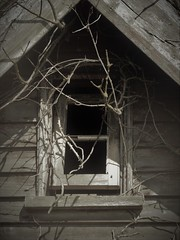 East Mersea.. (Julie Rutherford1 ( off/on )) Tags: window decay decrepid branches julie rutherford weathered wood pane