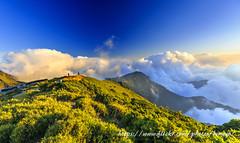 合歡夕照 (Benz Yu) Tags: 天空 森林 山岳 劍竹草原 台灣百岳 色溫 黃昏 夕照 雲海 台14甲線 風景 海拔3417公尺 合歡山登山步道 合歡山主峰 canonef1635mmf4lisusm