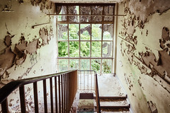 Rotten Stairs (Ralph Graef) Tags: stairs staircase stairway window symmetry rotten decay disused dilapidated desolation abandoned urbex bauhaus drabness