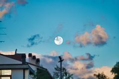 giorno 17 (26-09-18) (ilgladiatore83) Tags: scuola school luna moon lunadigiorno aphotoaday una photoproject fotoprogetto progettofotografico