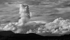Towers in the sky (PhotonArchive) Tags: cumulous cloud clouds saanich vancouverisland victoria sky blackandwhitephotos blackandwhite nuage ciel nube cielo britishcolumbia cloudscape dramatic hemel himmel canon 空 雲 云 天空 आकाश बादल облако небо