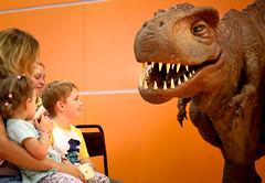 Путешествие в мир динозавров. Детская площадка ММКВЯ (РГДБ / RGDB) Tags: библиотека ргдб россия динозавр ярмарка library rgdb russia dinosaur prehistoric canon children animals reptile