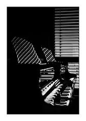Two Grand Pianos (Armin Fuchs) Tags: arminfuchs würzburg universityofmusic grandpiano stripes pianos musicalinstrument music light shadow reflection jalousie blinds fineart