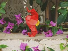 Seahorse (Rohit KO) Tags: origami seahorse rohit ko tant papercraft gen hagiwara