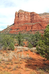 Standing Tall (craigsanders429) Tags: sedonaarizona arizona arizonamountains mountains redrocks rocks trees