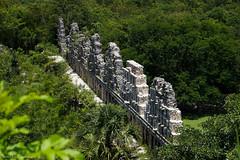 Uxmal / Ушмаль (Vladimir Zhdanov) Tags: travel mexico yucatan landscape maya uxmal ruins architecture building wall tree forest selva