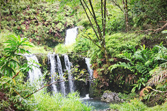 Road to Hana (Jessica Kowalczyk) Tags: maui hawaii canon vacation travel tourism nature outdoors road hana forest trees rocks no person landscape waterfalls streams lush green summer leaves