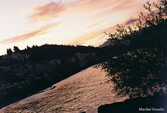 (maribelfiorella) Tags: analogue analogphoto analogic 35mm 35mmfilm 35mmphoto 35mmphotography photography photographer shootanalogic exposure composition focus