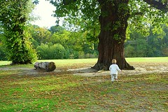 I want to hug a tree (majka44) Tags: park london children baby grass green tree people nature travel light autumn england 2018 mylove day nice small atmosphere