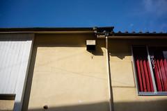 街 (fumi*23) Tags: ilce7rm3 sony street alley a7r3 wall miyazaki city emount 35mm sel35f28z sonnar zeiss sonnartfe35mmf28za 街 路地 宮崎 ソニー 壁