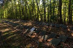 20181016-DSC_4098 (nikontino) Tags: noordwijk sankta begraafplaats