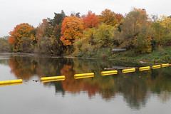 Beaver River (Simon -n- Kathy) Tags: thornbury ontario greycounty fall autumn trees walk path hike apples