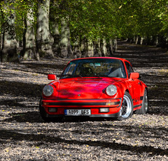 Porsche 911 3.2 Carrera Sport at Clumber Park - 25/10/2018 (kevaruka) Tags: porsche 911 club gb 32 carrera 1984 1983 clumber park nottinghamshire national trust autumn 2018 october kevin frost 25102018 car classic air cooled colour colours color colors sun sunshine sunny day shadows guards red orange green canon eos 5d mk3 70200 f28 is mk2 5d3 5diii composition flickr thephotographyblog front page fuchs gmodel impact bumper tree windshield forest grass